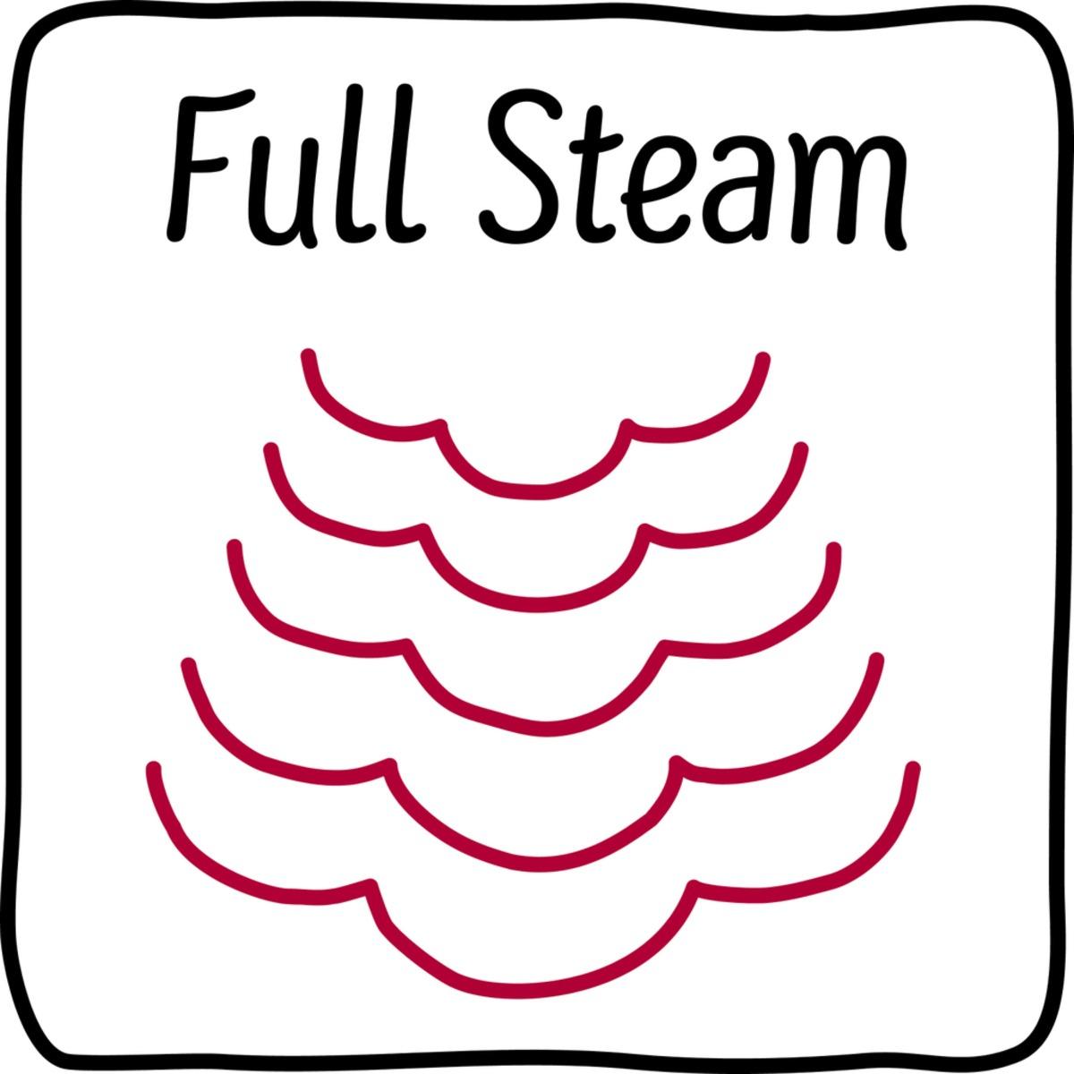 Neff Full steam